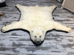 Ours Polaire - Tapis Item #20144